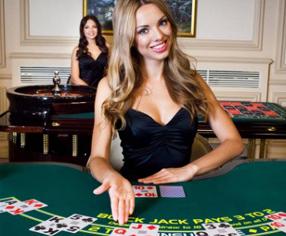 casinomulti Live Casino