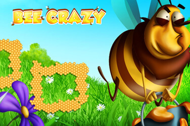 Bee Crazy HD