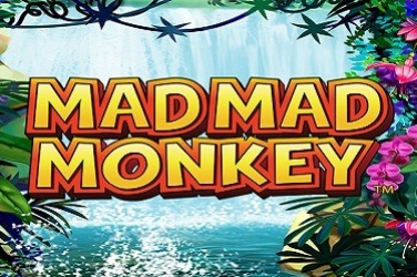 Mad Mad Monkey HQ