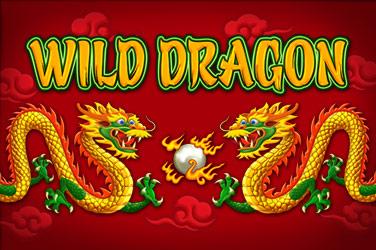 Wild Dragon