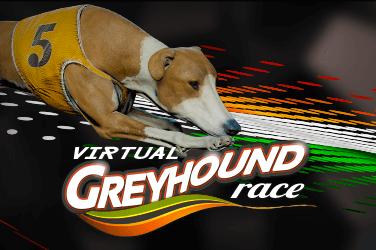 Virtual dogs